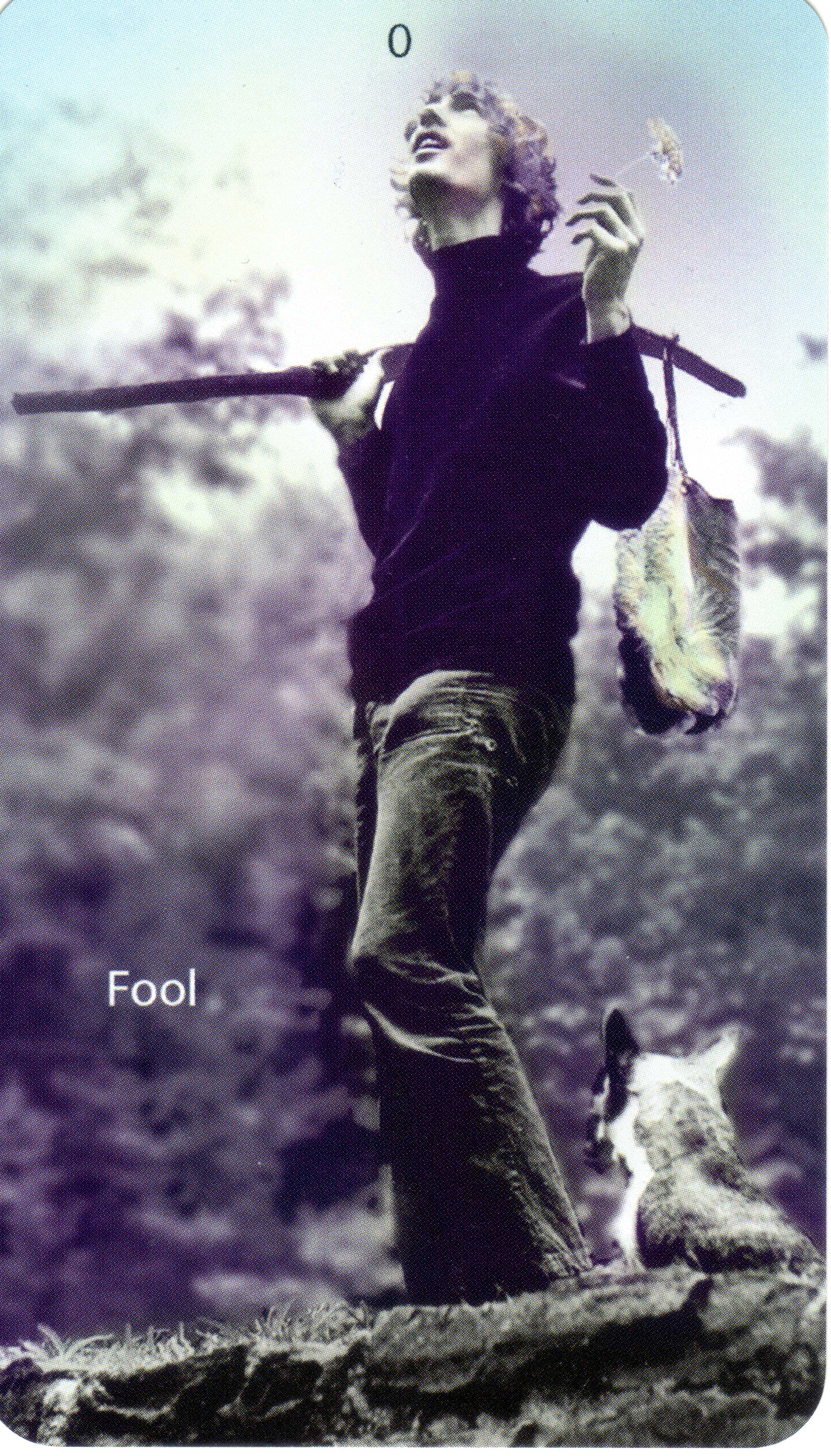 Fool From The Universal Waite Tarot: The Fool - Mountain Dream Tarot